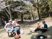 Sushilunch i parken