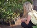 Kaktus på Djamaa el-Fna