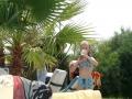 Under palmen