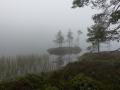 Troligtvis en fin utsikt från Hummelviks naturreservat, tyvärr i ett moln
