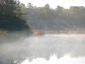 Södra udden i dimma