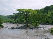 Efter regn kommer flod